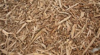 Bois des Dômes - paillage pour déco et protection végétale